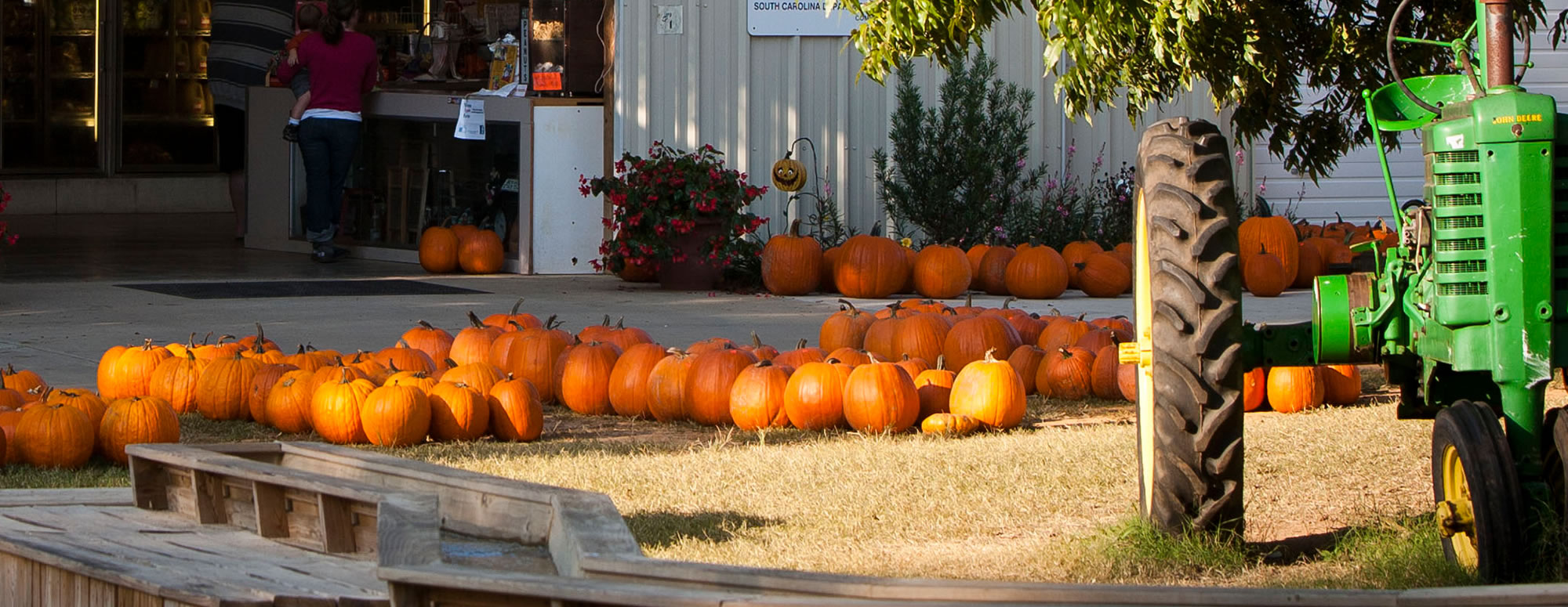 Fall In Love With Autumn in Spartanburg